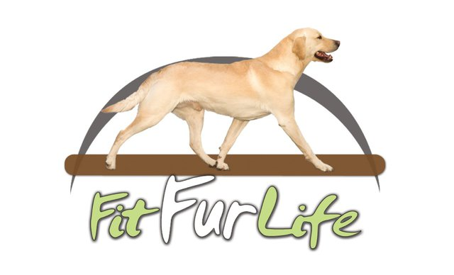 FitFurLife dog treadmills