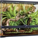Best Reptile Terrariums Reviewed